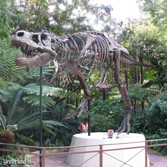 Skeleton of Sue, the T-rex (exact replica): 2007 by Werner Weiss.