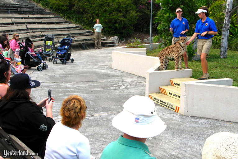 Animal demonstration at Miami Metrozoo, 2009