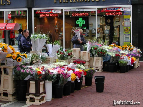 Photo of an outdoor flower market in Dublin, Ireland